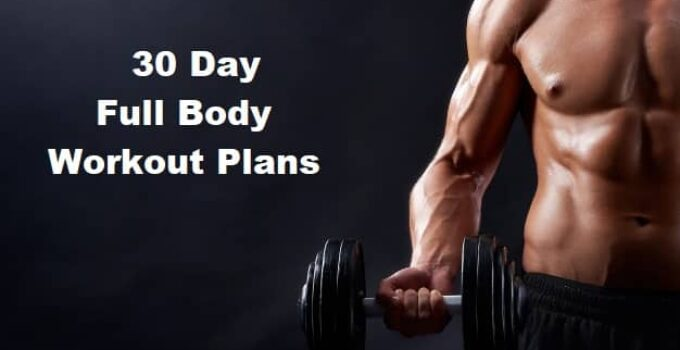 30 day full body workout plans for beginners