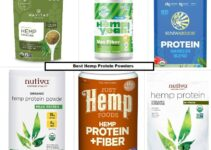 7 Best Hemp Protein Powders in 2021 (Recommended)